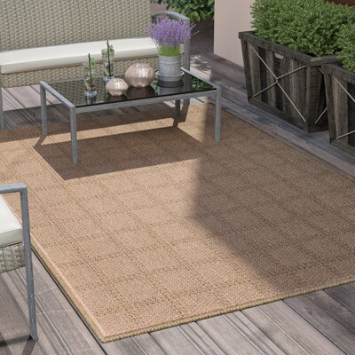 Annica Plaid Beige Indoor/Outdoor Area Rug Rug Size: 53 x 77