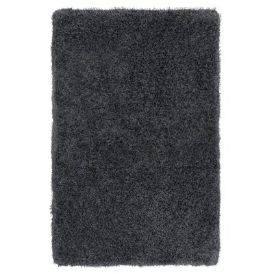Nasim Charcoal Area Rug Rug Size: Rectangle 5 x 8