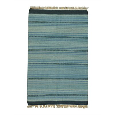 Flat Weave Striped Durie Kilim Oriental Hand-Knotted Light Blue/Gray Area Rug