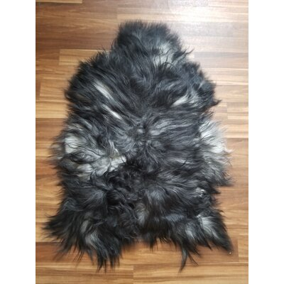 One-of-a-Kind Kratz Hand-Woven Sheepskin Black Area Rug
