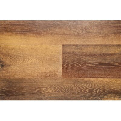 6 x 48 x 12mm Laminate Flooring in Nutmeg