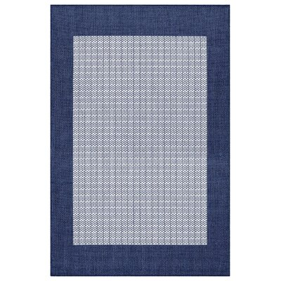 Fairhill Checkered Field Blue/Gray Indoor/Outdoor Area Rug Rug Size: Rectangle 39 x 55