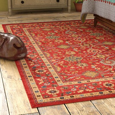 Willow Red Indoor Area Rug Rug Size: Rectangle 6 x 9