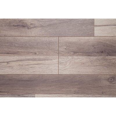 Timeless 7 x 72 x 12mm Oak Laminate Flooring in Brown