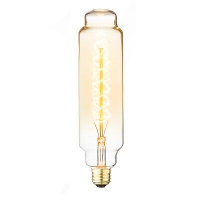 60W Amber E26 Incandescent Edison Stick Light Bulb