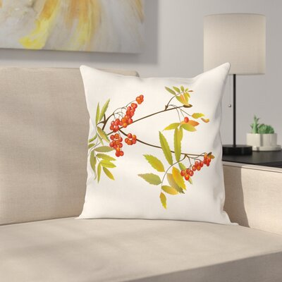 Fresh Ashberry Square Pillow Cover Size: 16 x 16