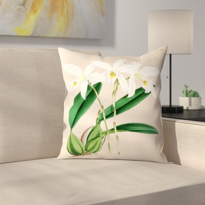 Fitch Orchid Laelia Anceps Hilliana Throw Pillow Size: 18 x 18