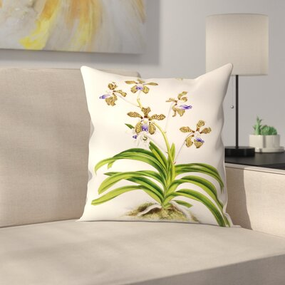 Fitch Orchid Vanda Roxburghii Throw Pillow Size: 14 x 14