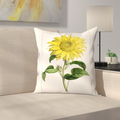 Sonnenblume Throw Pillow Size: 20 x 20