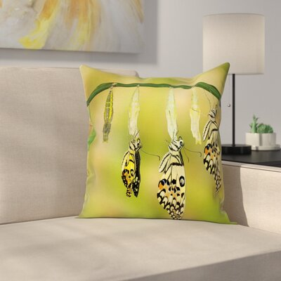 Swallowtail Transform Nature Square Cushion Pillow Cover Size: 24 x 24