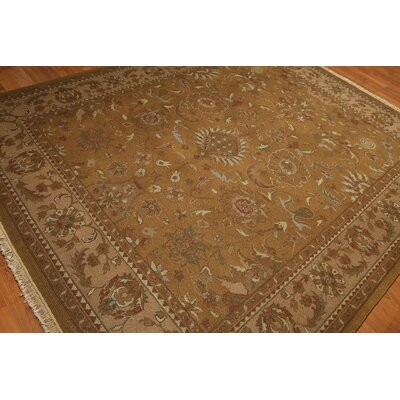 One-of-a-Kind Replogle Oriental Hand-Knotted Wool Olive/Brown Area Rug