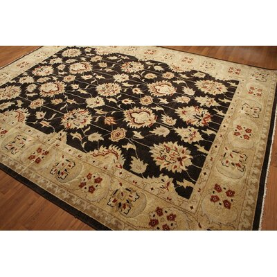One-of-a-Kind Reppert Oriental Hand-Knotted Wool Chocolate Brown/Warm Beige Area Rug