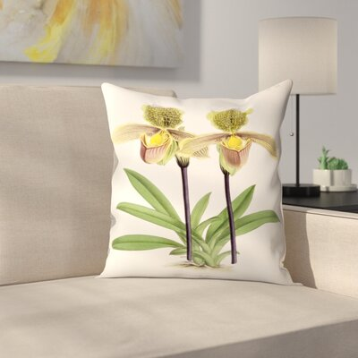 Fitch Orchid Cypripediuminsigne Throw Pillow Size: 14 x 14