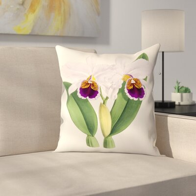 Fitch Orchid Cattleya Labiata Percivaliana Throw Pillow Size: 18 x 18