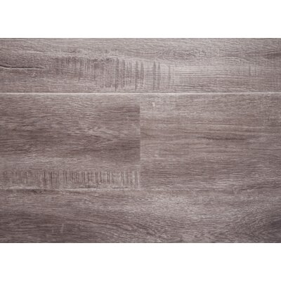 Rio 7.5 x 48 x 12mm Oak Laminate Flooring in Gray with Moisture Resistant Wax