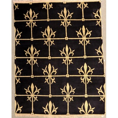 Bucklin One-of-a-Kind Indian Transitional Hand-Knotted Wool Black Area Rug