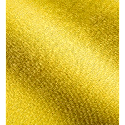 Shenandoah Outdoor Lumbar Pillow Color: Sunshine Yellow