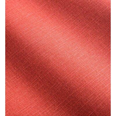 Shenandoah Outdoor Lumbar Pillow Color: Coral