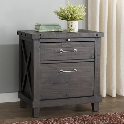 Langsa 2 Drawer Nightstand Color: Caf�