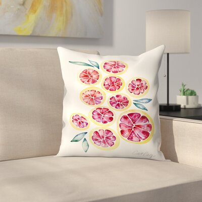 Grape Fruit Slices Throw Pillow Size: 14 x 14
