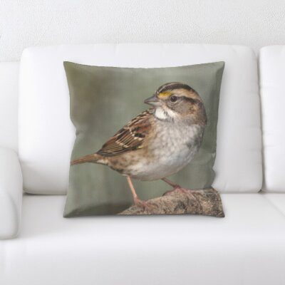Chrisman Close Up of Little Bird Throw Pillow