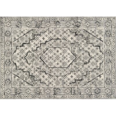 Aparicio Gray/Graphite Area Rug Rug Size: Rectangle 92 x 127