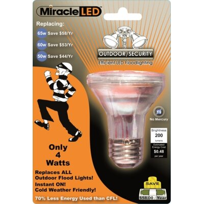 4W E26/Medium (Standard) LED Light Bulb