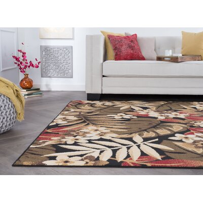 Dasaki Black Area Rug Rug Size: Rectangle 5 x 7