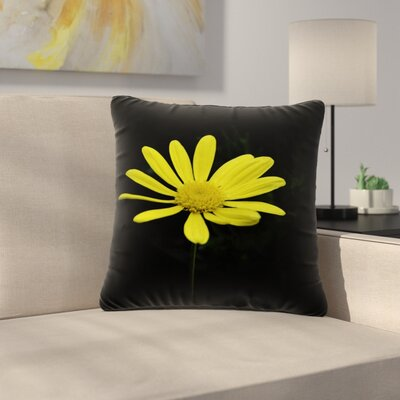 Nick Nareshni Petal Daisy Floral Photography Outdoor Throw Pillow Size: 18 H x 18 W x 5 D