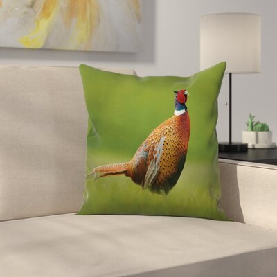 Pheasant Long Tail Meadow Square Pillow Cover Size: 16 x 16