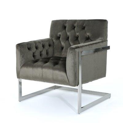 Hayden Modern Armchair Upholstery: Gray