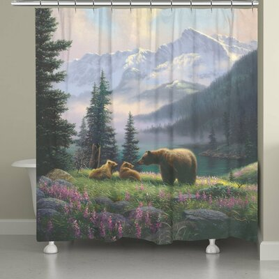 Stalder Mountain Bear with Cubs Shower Curtain