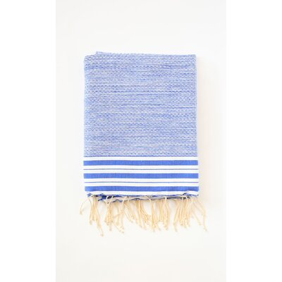 Pouncy Fouta Bath Sheet Color: Light Blue