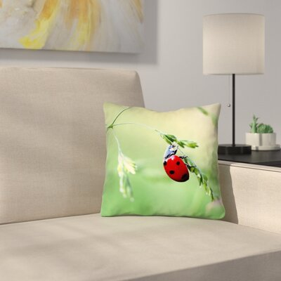 Duriel Double Sided Print Square 100% Cotton Pillow Cover Size: 14 x 14