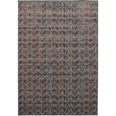 Maclean Dark Gray Area Rug