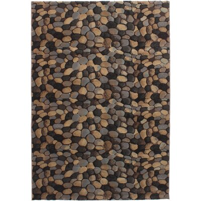 Partida Brown Area Rug