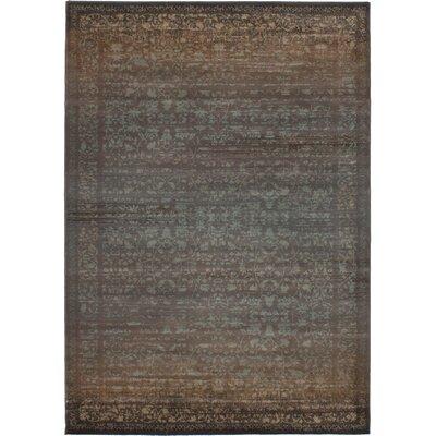Partida Dark Brown/Turquoise Area Rug