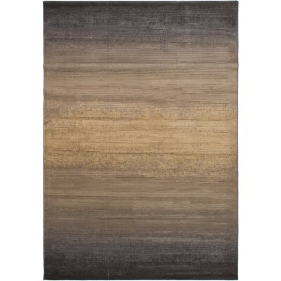 Douthit Power Loom Dark Gray/Tan Area Rug