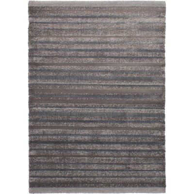 Groner Dark Gray Area Rug