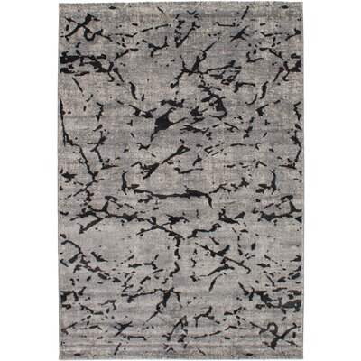 Grogg Gray Area Rug