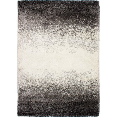 Roxanna Salt and Pepper Black/Cream Area Rug