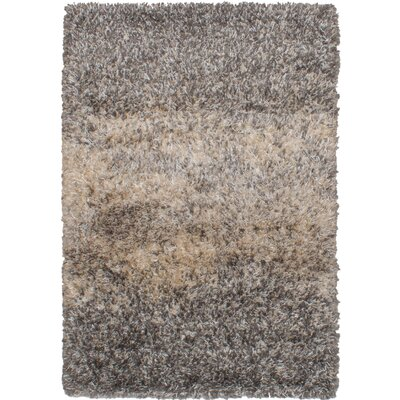Roxanna Salt and Pepper Dark Gray Area Rug