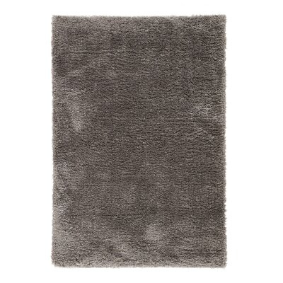 Medlock Charcoal Gray Area Rug Rug Size: Rectangle 5 x 8