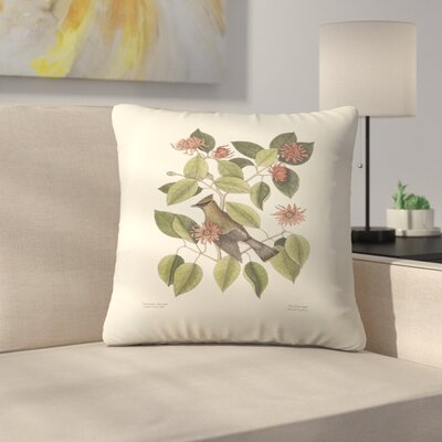 The Chatterer Throw Pillow Size: 14 x 14