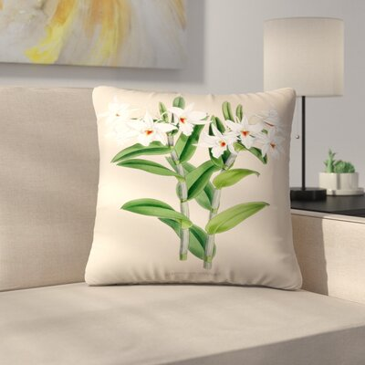 Fitch Orchid Dendrobium Draconis Throw Pillow Size: 18 x 18
