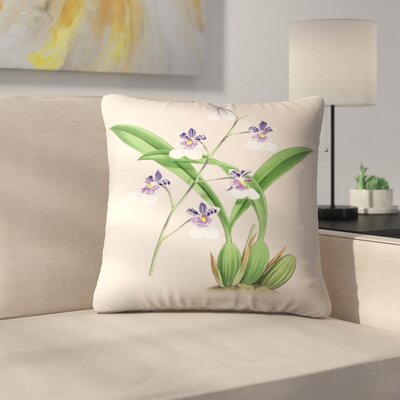 Fitch Orchid Oncidium Phalaenopsis Throw Pillow Size: 14 x 14