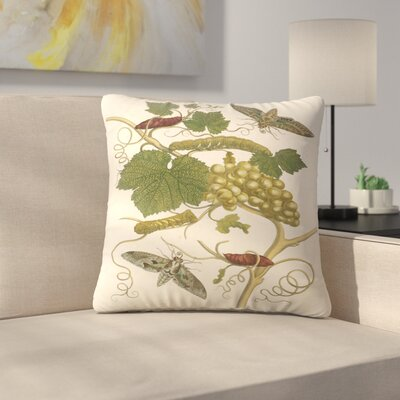 Green Grapes Throw Pillow Size: 16 x 16
