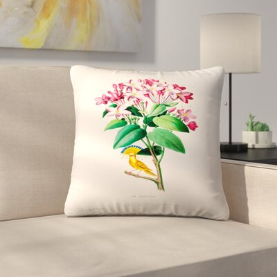 Flored Amerique Lajusticia Throw Pillow Size: 18 x 18