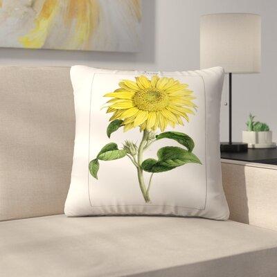 Sonnenblume Throw Pillow Size: 16 x 16