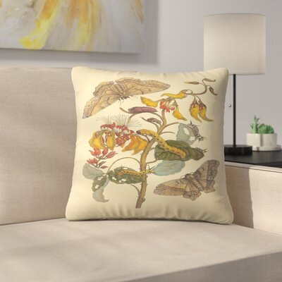 Bwm Throw Pillow Size: 16 x 16